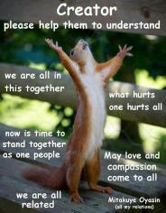 squirrel praying